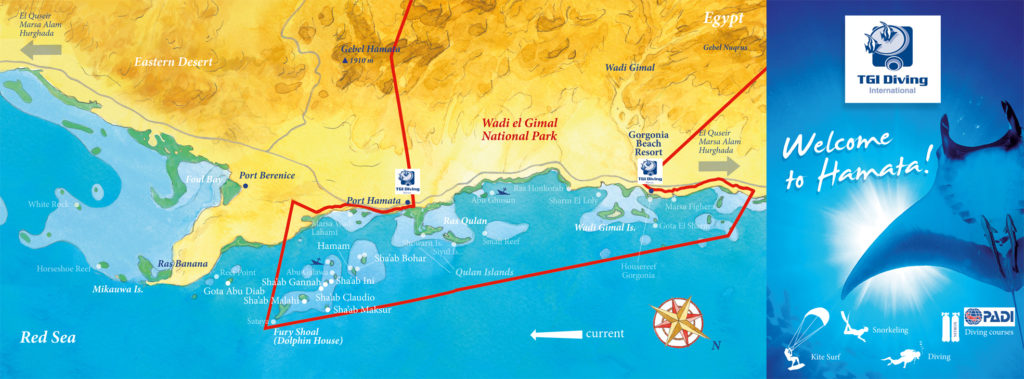 Hamata, Mar Rosso, brochure, concept + illustrazione + grafica per TGI diving